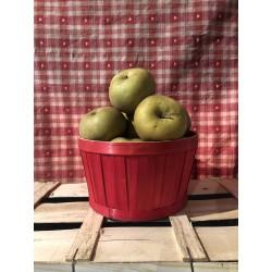 Pomme canada grise /1kg