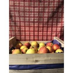 caisse pomme gala 10kg
