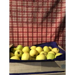 caisse pomme golden 10kg