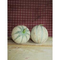 melon/piece